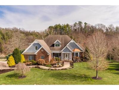 Greeneville Single Family Home For Sale: 773 Waterstone Circle
