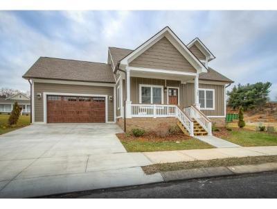 Johnson City Single Family Home For Sale: 161 Princeton Gardens Drive