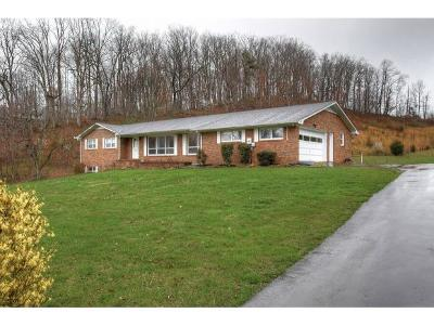 Unicoi Single Family Home For Sale: 110 Willow Pond Road