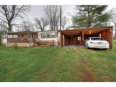 Piney Flats Single Family Home For Sale: 464 Hunting Hill Road
