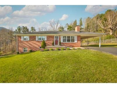 Hampton Single Family Home For Sale: 208 Mountain View Circle