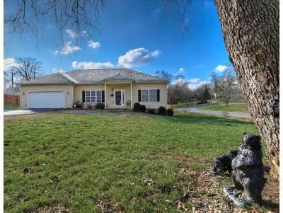 Johnson City Single Family Home For Sale: 900 Althea St