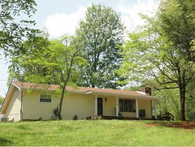 Elizabethton Single Family Home For Sale: 239 Aviation Drive