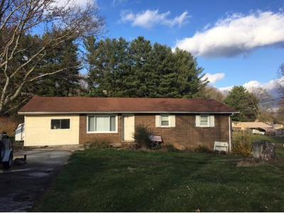 Piney Flats Single Family Home For Sale: 332 Nelson Ave.