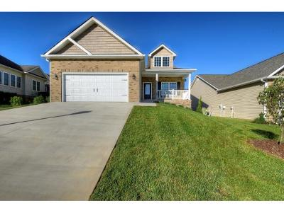 Johnson City Single Family Home For Sale: 1372 Willow Springs Dr