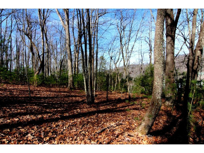 Butler Residential Lots & Land For Sale: Myrtle Drive, Lot #14
