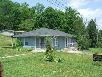 Blountville Single Family Home For Sale: 247 J H Fauver Rd