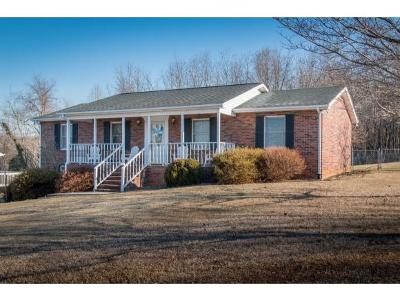 Bristol TN Single Family Home For Sale: $195,000