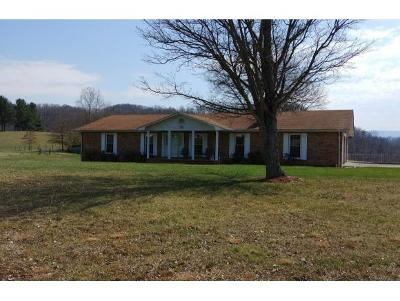Bristol Single Family Home For Sale: 4120 Old Jonesboro Rd