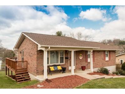 Bristol VA Single Family Home For Sale: $132,499