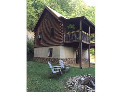 Roan Mountain Single Family Home For Sale: 224 Black Bear Ridge Road