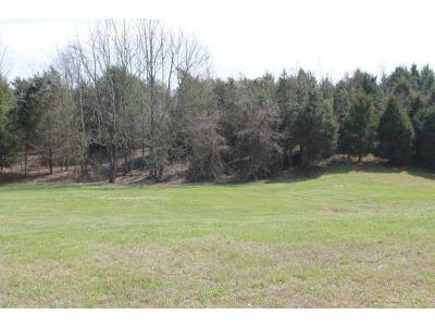 Johnson City Residential Lots & Land For Sale: 623 Harbor Point Drive
