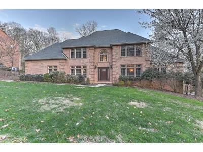 Kingsport Single Family Home For Sale: 1809 Fleetwood Drive