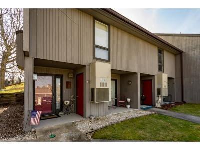 Johnson City Condo/Townhouse For Sale: 115 Beechnut St #C-1