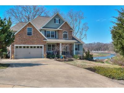 Johnson City Single Family Home For Sale: 231 Madison Walk