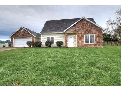 Johnson City Single Family Home For Sale: 11 Mannington Court