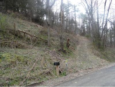 Butler TN Residential Lots & Land For Sale: $127,500