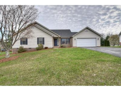 Johnson City Single Family Home For Sale: 9 Moccasin Ct