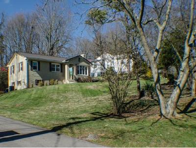 Bristol Single Family Home For Sale: 1505 Highway 126
