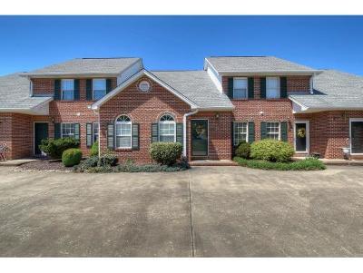 Blountville Condo/Townhouse For Sale: 108 Eagle View Private Drive #108