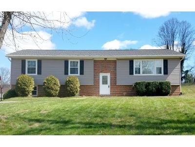 Bristol VA Single Family Home For Sale: $189,900
