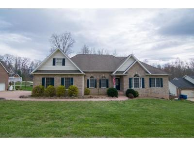 Blountville Single Family Home For Sale: 150 Polo Drive