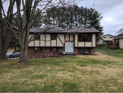 Bristol VA Single Family Home For Sale: $149,000