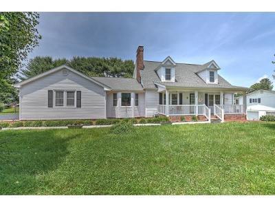 Bristol Single Family Home For Sale: 4241 L Old Jonesboro Road