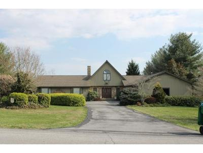 Blountville Single Family Home For Sale: 483 Canterbury Drive