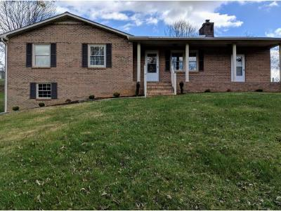 Abingdon Single Family Home For Sale: 25876 Watauga Rd.