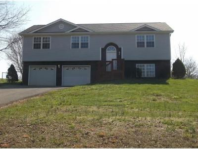 Blountville Single Family Home For Sale: 319 Center Drive