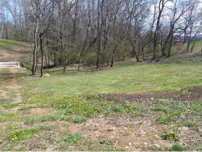 Washington-Tn County Residential Lots & Land For Sale: Pig Broyles