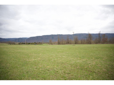 Greene County Residential Lots & Land For Sale: Ricker Rd.
