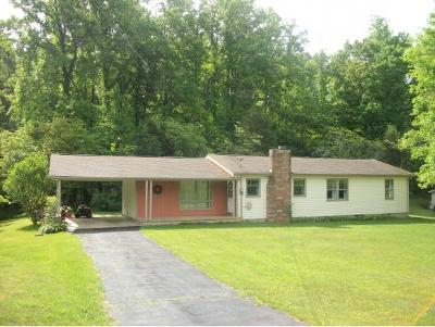 Blountville Single Family Home For Sale: 2996 Island Road