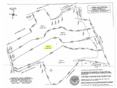 Piney Flats Residential Lots & Land For Sale: TBD Deerlick Rd (Tract 3)