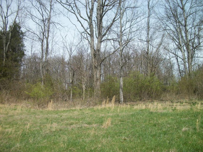 Residential Lots & Land For Sale: 222 Meadow View Road
