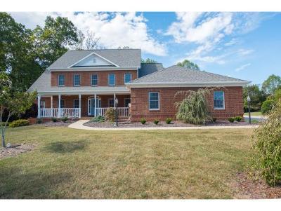 Kingsport Single Family Home For Sale: 226 Saddle Ridge