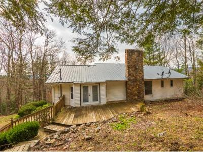 Shady Valley Single Family Home For Sale: 571 Owl Hollow Rd.