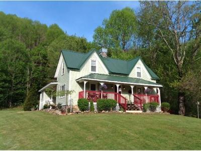 Roan Mountain Single Family Home For Sale: 684 Hampton Creek