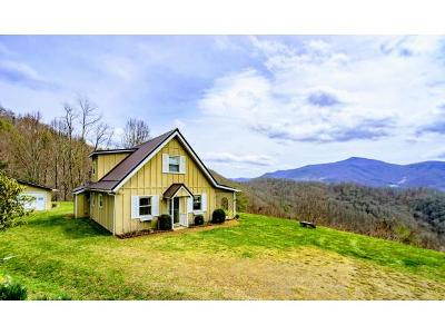 Roan Mountain Single Family Home For Sale: 209 Dolan Hollow Rd.