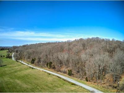 Piney Flats Residential Lots & Land For Sale: Sugar Hollow Road