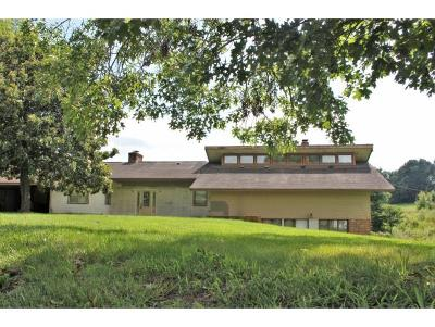 Greene County, Washington-Tn County Single Family Home For Sale: 5315 Kingsport Hwy