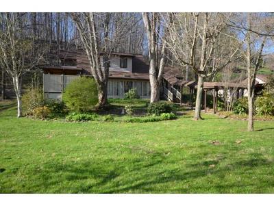 Unicoi Single Family Home For Sale: 411 Greenbrook Circle