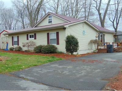 Blountville Single Family Home For Sale: 1122 Gottland Shoals Rd.