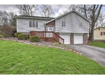 Bristol VA Single Family Home For Sale: $155,000