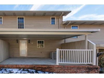 Blountville Condo/Townhouse For Sale: 408 Lynn Road #E