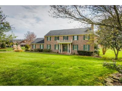 Kingsport Single Family Home For Sale: 1009 Winchester Lane
