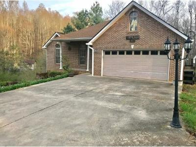 Kingsport TN Single Family Home For Sale: $175,000