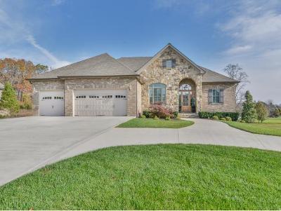 Johnson City Single Family Home For Sale: 2172 Sawyer's Pond Drive