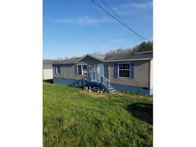Elizabethton Single Family Home For Sale: 103 Hartsell Dr